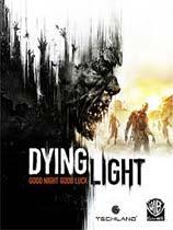 《消逝的光芒信徒增强版》免安装中文版