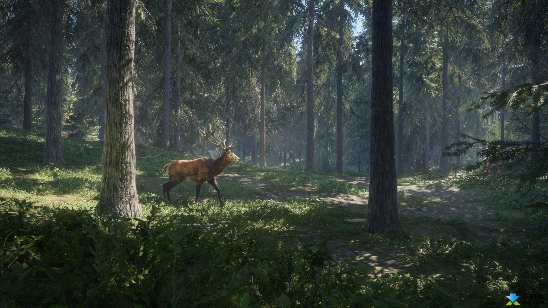 猎人野性的呼唤界面2