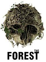 《森林》免安装中文版