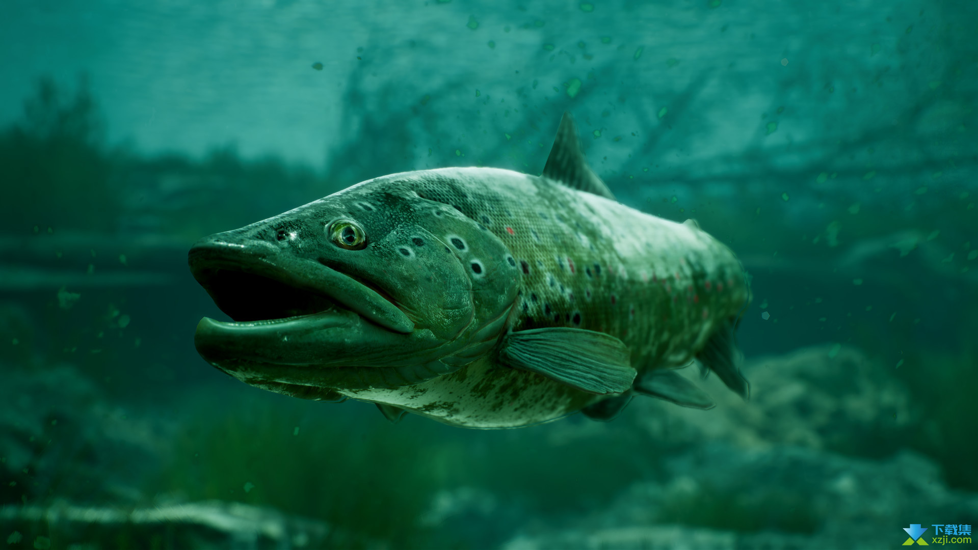 捕获物鲤鱼和大鱼界面3