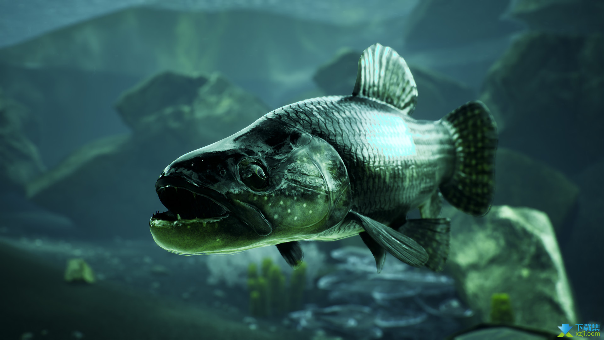 捕获物鲤鱼和大鱼界面4