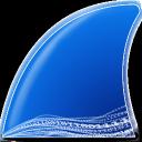 Wireshark(网络封包分析工具)v3.49 中文破解版