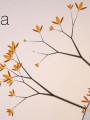 真菌世界HD破解版下载-《真菌世界HD》免安装中文版