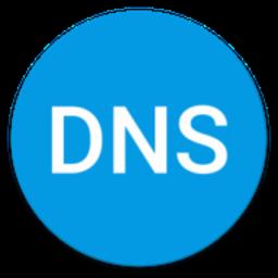 DNS Changer Pro 1201r 安卓版