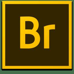 Adobe Bridge破解版(图像管理工具)2020.10.1.1.166 中文免费版