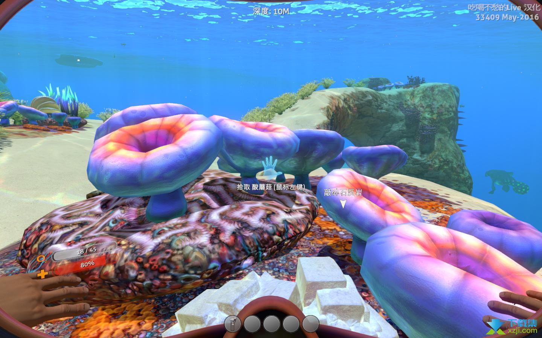 水下之旅美丽水世界界面3
