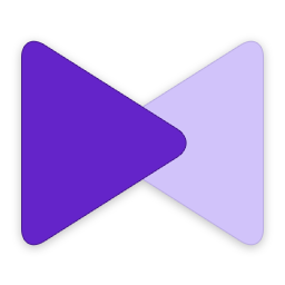KMPlayer播放器v4.2.2.49 中文免费版
