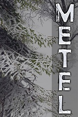 《Metel恐怖逃脱》免安装中文版