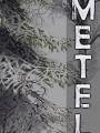Metel恐怖逃脱破解版下载-《Metel恐怖逃脱》免安装中文版