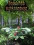 摘果子模拟器破解版下载-《摘果子模拟器》免安装中文版