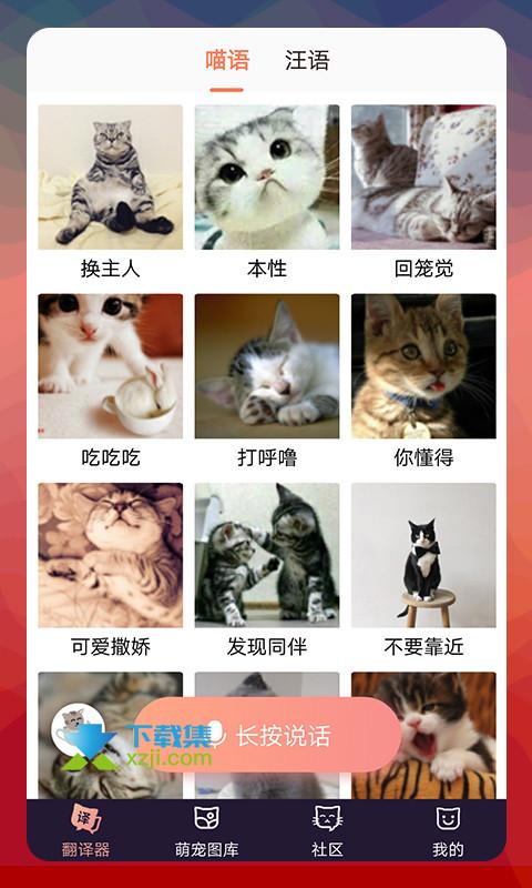 猫语翻译器 2