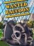 被通缉的浣熊破解版下载-《被通缉的浣熊》免安装中文版